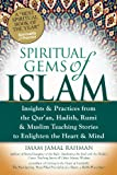 Spiritual Gems of Islam: Insights & Practices from the Qur'an, Hadith, Rumi & Muslim Teaching Stories to Enlighten the Heart & Mind (Skylight Illuminations)