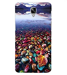 ColourCraft Beautiful Image Design Back Case Cover for OnePlus Three