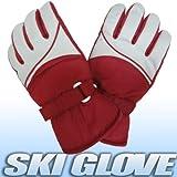 レディーススキーグローブ女性用手袋Mサイズ23cm