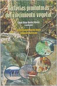 Bacterias promotoras del crecimiento vegetal (Spanish
