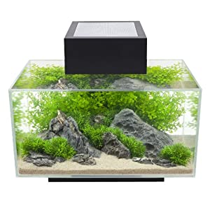 Fluval Edge Black Gloss 23l Led