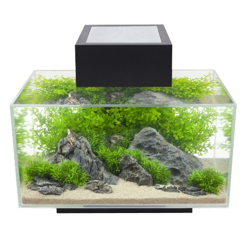 fluval-edge-i-aquarium-schwarz