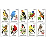 USPS Forever Stamps Songbirds Booklet of 20