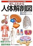 ぜんぶわかる人体解剖図―系統別・部位別にわかりやすくビジュアル解説