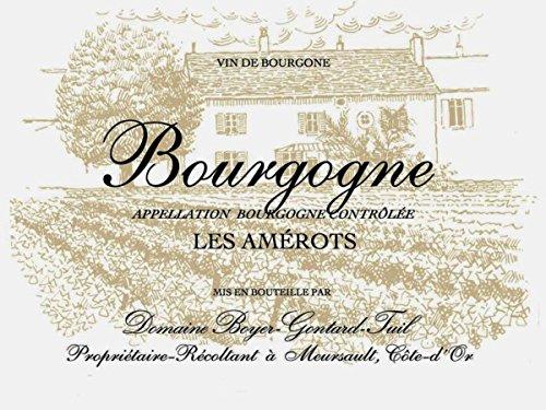 2010 Domaine Boyer-Gontard: Bourgogne Les Amerots 750 Ml