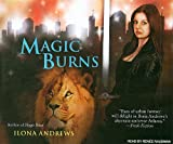 Magic Burns (Kate Daniels)
