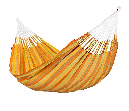 Double Hammock Carolina Citrus