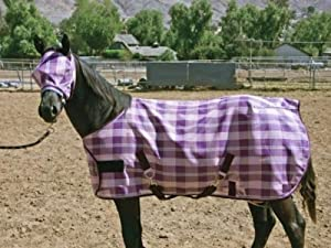 Kensington KPP Yearling/Pony Horse Protective Fly Sheet, Deluxe Black Plaid, 50-Inch to 58-Inch