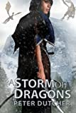 img - for A Storm of Dragons: A New Epic Fantasy Adventure (The Nobody Chronicles) (Volume 1) book / textbook / text book