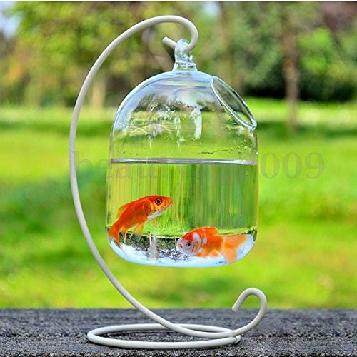 New Hanging Mount Bubble Aquarium Fish Glass Vase Tank Plant Home Decoration 16x10cm Set22 (Ada Clear Super compare prices)