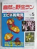自然と野生ラン 2002年 05月号[雑誌]