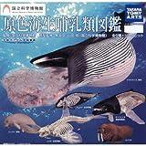 カプセル 立体カプセル百科事典 国立科学博物館 原色海生哺乳類図鑑 シークレット1種入り全7種フルセット
