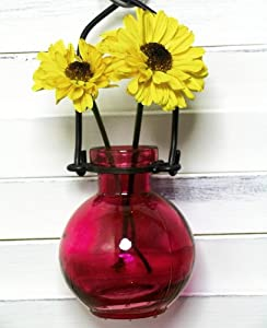 Hanging Flower Glass Wall Vase 1/pc ~ G73 Red Glass Bottle ~ Floral Vase ~ Colored Vase ~ Bud Vase ~ Garden Vase