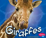 Giraffes (African Animals)