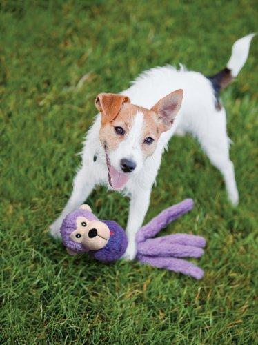 Kong Snugga Wubba Friend Dog Toy