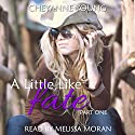 A Little like Fate: Robin and Tyler Series, Book 1 (       UNABRIDGED) by Cheyanne Young Narrated by Melissa Moran