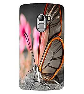 ColourCraft Beautiful Butterfly Design Back Case Cover for LENOVO A7010