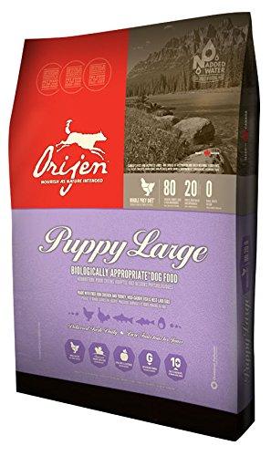 Orijen Large Breed Puppy - 28.6lb (Orijen Puppy Food compare prices)