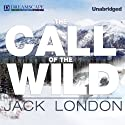 The Call of the Wild (       UNABRIDGED) by Jack London Narrated by Matthew Steward