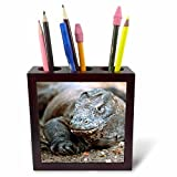3dRose ph_73174_1 Indonesia, Sunda Archipelago, Komodo Dragon Lizard-AS11 JST0015-Jay Sturdevant-Tile Pen Holder, 5-Inch