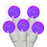 Set of 50 Purple LED G12 Berry Fashion Glow Christmas Lights - White Wire