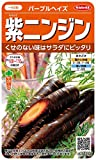 サカタのタネ 実咲野菜5630 紫ニンジン パープルヘイズ 00925630
