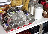 51kg2V3sjRL. SL160  GTP Shelf Buddy   A Fantastic Storage Rack For Cans Such As Canned Pet Food