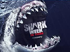 Shark Week Season 25 [HD]