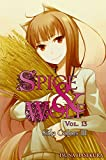 Spice and Wolf, Vol 13 - Novel: Side Colors III