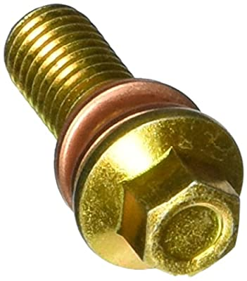 Carlson Quality Brake Parts H9470-2 Inlet Bolt