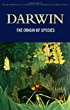 Image of The Origin of Species (Wordsworth Classics of World Literature) (Wordsworth Collection)