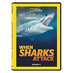 When Sharks Attack Season 4
