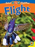 Did you know that many species are able to glide through the air using loose flaps of skin or other adaptations? This is called passive flight because the animal does not need to use its own energy to stay in the air. Discover these and other intrigu...