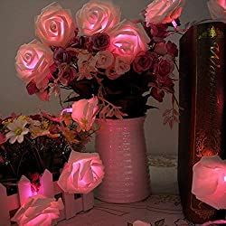 ZJchao 20 LED Rose Battery Operated String Lights Perfect Decoration for Valentines Day, Christmas, Party and other Celebration Occasions Pink