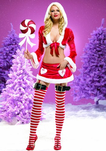 Christmas 2Pc Miss Santa Claus Sexy Holiday Party Costume