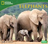 2014 National Geographic Elephants Deluxe Wall