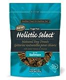 Holistic Select Salmon Recipe Natural Dog Treats, 6-Ounce Bag