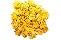 50 Mother\'s Day Farm Fresh Yellow Roses By justFreshRoses