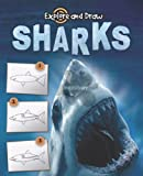 img - for Sharks: Drawing and Reading (Explore & Draw) book / textbook / text book