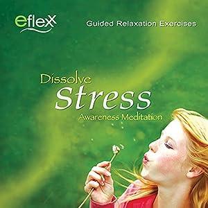 The Eflexx Awareness Meditation Speech