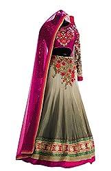 Indian styles grey,georgette lehenga