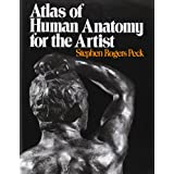 Atlas of Human Anatomy for the Artist ~ Stephen Rogers Peck