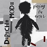 Playing the Angel [2lp 180 Gra [Vinyl LP]