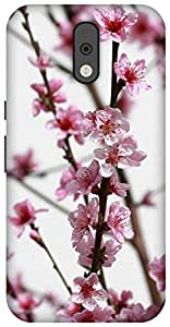The Racoon Lean printed designer hard back mobile phone case cover for Motorola Moto G 4th Gen. (pink flowe)