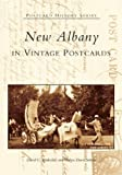 img - for New Albany in Vintage Postcards (IN) (Postcard History Series) book / textbook / text book