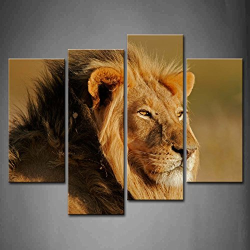 4 Panel Wall Art Big Male Lion Front Of The Eye Painting Pictures Print On Canvas Animal The Picture For Home Modern Decoration Piece (Stretched By Wooden Frame,Ready To Hang)