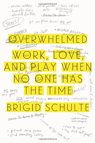 Overwhelmed: Work, Love, and Play When No One Has the Time