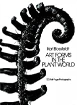 Art Forms in the Plant World: 120 Full-Page Photographs (Dover Pictorial Archive)