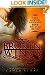 Broken Wings (Hidden Wings Series Boo...