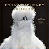 Extraordinary Chickens 2014 Wall Calendar